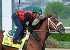 Mr. Z Bought by Calumet, Entered in Preakness