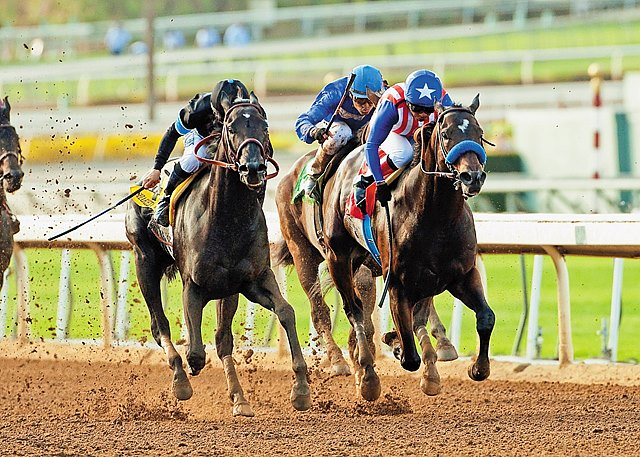 Stuck wide every step of the way, odds-on choice Shared Belief stayed unbeaten in seven starts with a neck victory over Fed Biz in the $300,000 Grade I Awesome Again Stakes at Santa Anita Park.