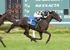 Quality Rocks Rolls to Take Florida Oaks
