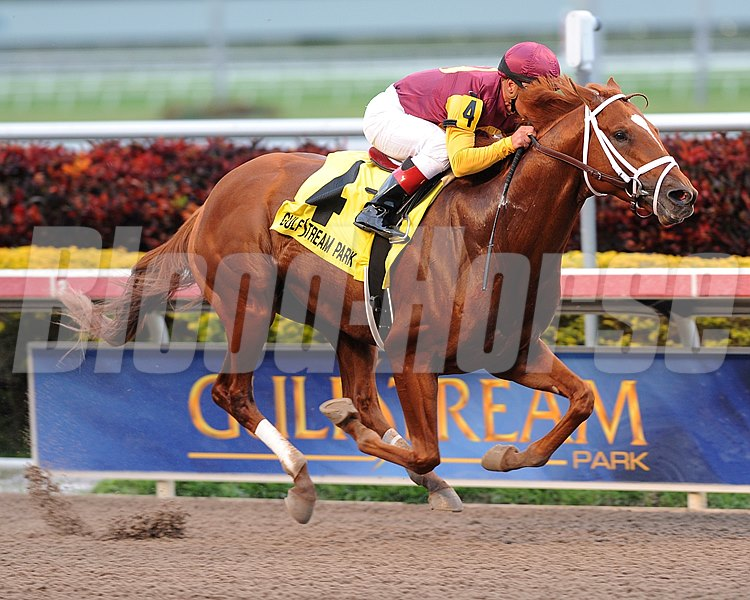 Discreet Dancer wins the Gulfstream Park Handicap (gr. 2).