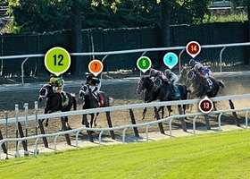 2013 Belmont Stakes Race Sequence