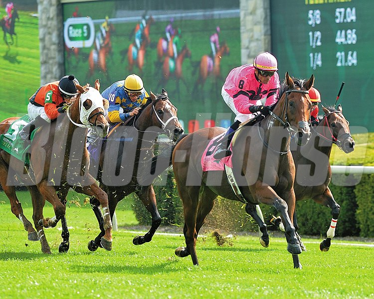Havelock returned to his home turf and mowed down nine opponents to take the $150,000 Grade III Woodford at Keeneland.