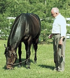 Maryland Horse Breeder Murray Dies at Age 80
