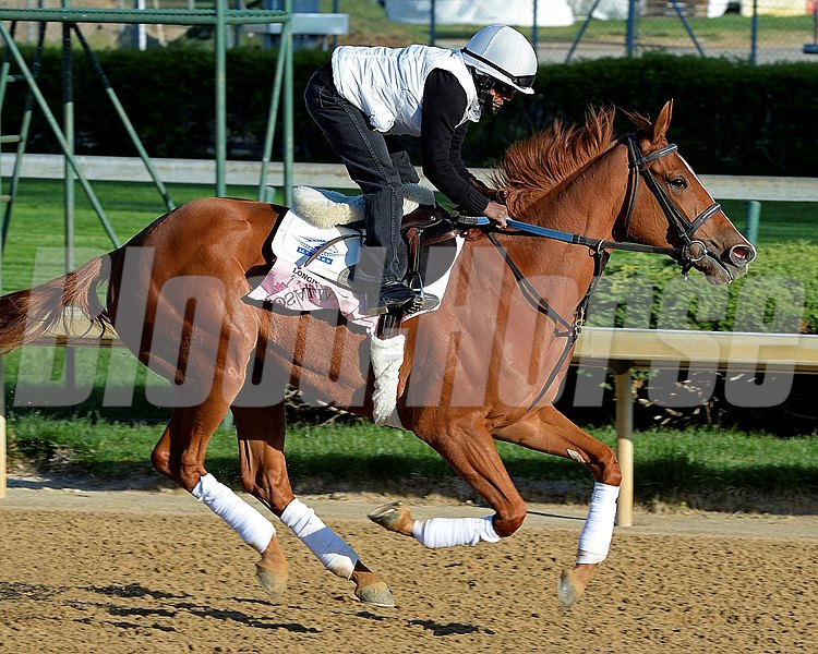 Caption: Rosalind