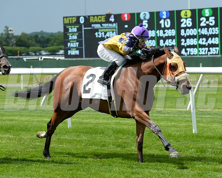 Mah Jong Maddnes wins the Mount Vernon Stakes.