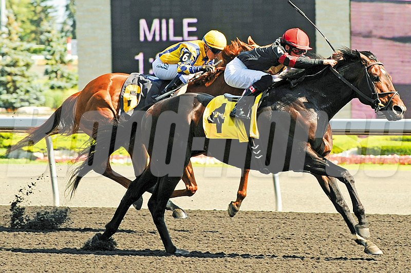 Jockey Emma Jayne Wilson guides Stronach Stable's Hunters Bay to victory in the 2012 $200,000 Dominion Day Stakes.