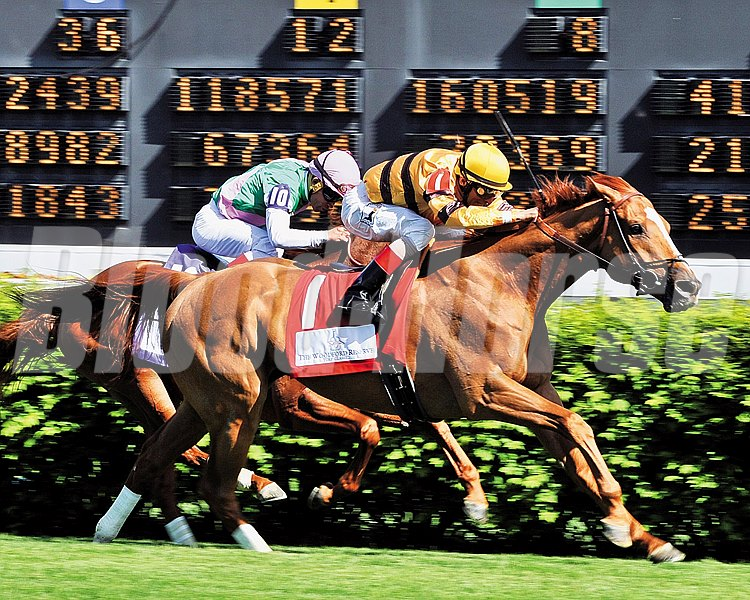 Wise Dan and jockey John Velazquez ride to victory in the Woodford Reserve Turf Classic.