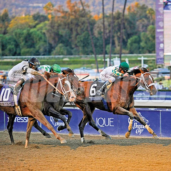 Caption: Mucho Macho Man, inside rail, wins the Breeders' Cup Classic, gr. I, over Will Take Charge with Declaration of War (center) in third.