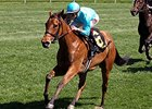 Lady Eli Showing Improvement From Laminitis