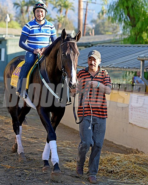 Caption:  Cigar Street