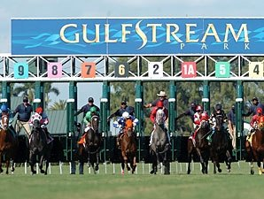Quarter Horse Race Run at Gulfstream Park