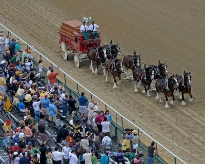 The Budweiser Clydesdales were part of the day's festivities