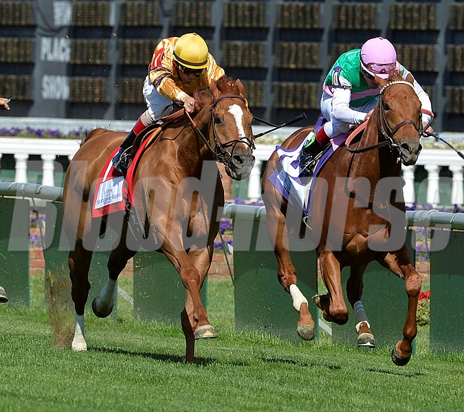 Two time horse of the year Wise Dan ridden by jockey John Velazquez (left) outduels Seek Again to the wire in the Grade I Woodford Reserve Turf Classic at Churchill Downs in Louisville, Kentucky.