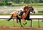 Beholder Back on Track After Illness