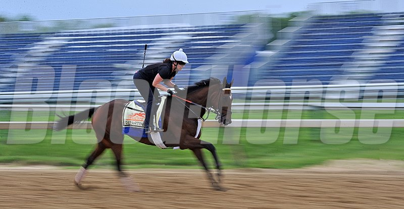 Departing has his first gallop at Pimlico Thursday morning...