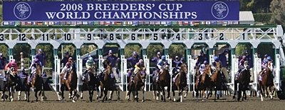 The pack breaks from the gate in the 2008 Breeders' Cup Juvenile at Santa Anita.