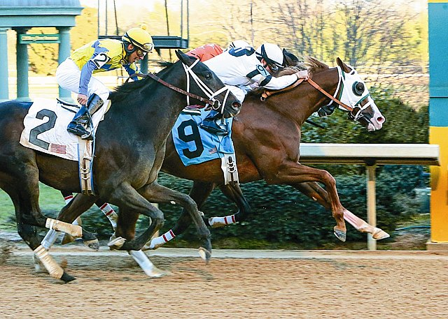 January 21, 2013