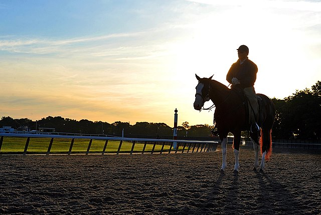 D. Wayne Lukas at Belmont Wednesday morning...