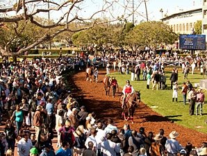 Santa Anita Reports Attendance, Handle Gain