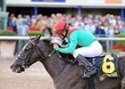 Mr. Prospector Winners Back for More