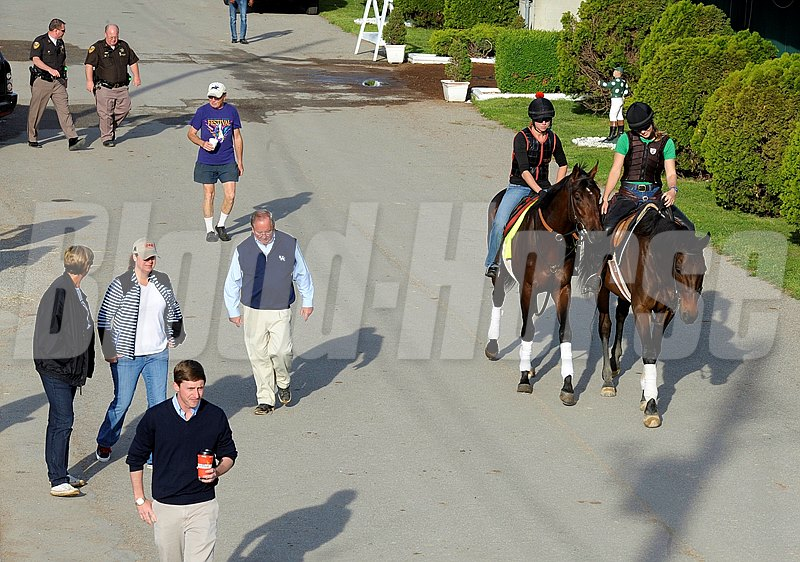 Caption:  Orb walks to the track with his connections, Mr and Mrs. Shug McGaughey and son Chip (foreground) and Daisy Phipps (bluejeans)
