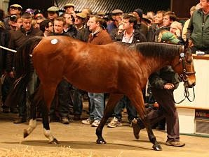 Tattersalls 2nd Day Remains Strong