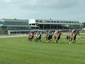 Tampa Bay Stakes Purses to Increase