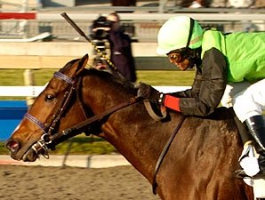 Stakes Winner, Producer Daijin Euthanized