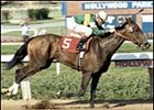 Three Chimneys Broodmare Gorgeous Dead
