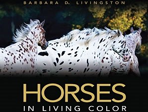 Livingston Book Wins Prestigious Award