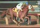 Grade I Winner Habibti Retired