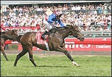 Makybe Diva Retired After Third Straight Melbourne Cup Win