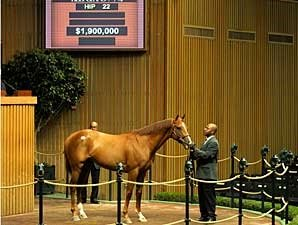 Keeneland Average Up; Vallenzeri Sells