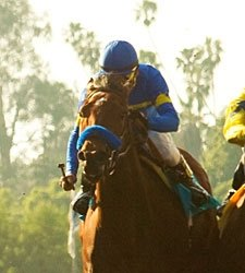 Six Seek First Graded Win in Milady Handicap