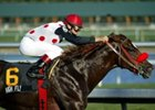 Zito Gives High Fly a Breeze at Palm Meadows