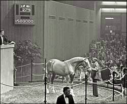 A Memorable Date: First Seven-Figure Yearling Sold