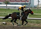 Lava Man Works Three Furlongs