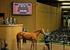 Secret Gypsy Sells for $540,000 at Keeneland