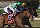 Turfway Park Race Report: Perfect Cast