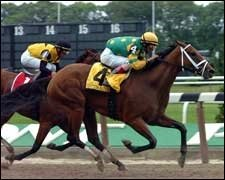 Delaware Oaks Expected to be a Showdown