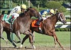 Harmony Lodge Out to Win Another Gulfstream Stakes