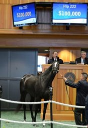 F-T New York Mixed Sale Grosses $1,933,600
