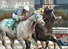 Funny Cide, Ten Most Wanted, Peace Rules Square Off Sunday