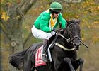 Black Jack Blues Romps in U.S. Grand National