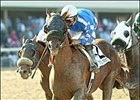 Home Team Has the Edge in Japan Cup, Japan Cup Dirt
