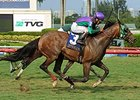 Longshot Rerun Marches to Miami Mile Score
