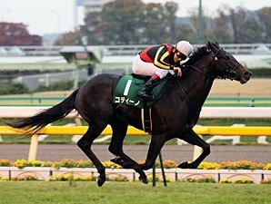 Undefeated Colts Meet in Asahi Hai Futurity