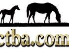 CTBA Yearling Auction Holds Its Own Vs. Record Sale in 2001