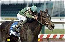 Friel's For Real Was Real Deal in Pimlico Distaff