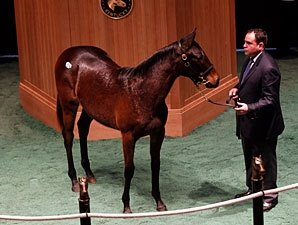Indian Charlie Filly Sells for $245,000